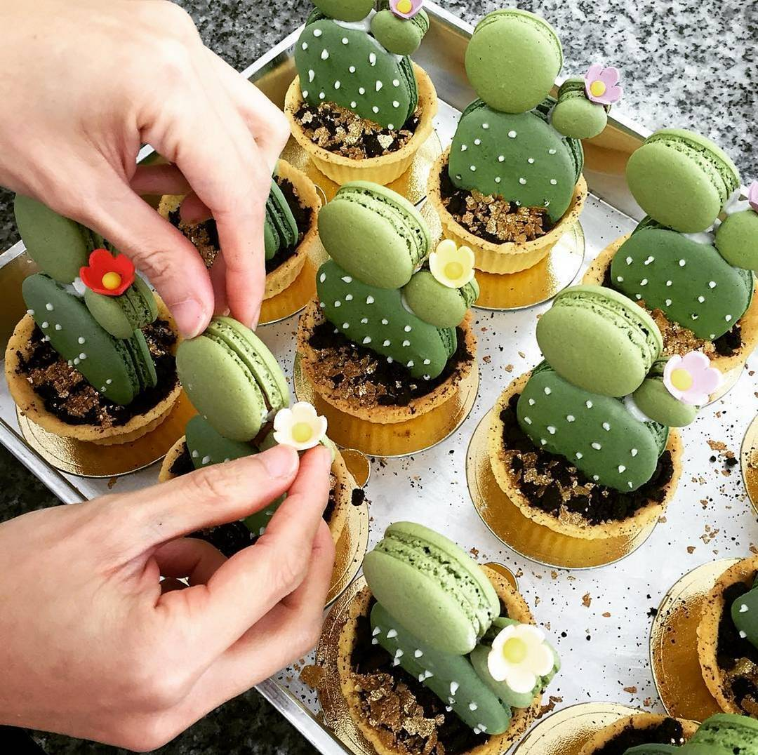 Cactus-Cup-Cakes_Desert-Desserts_02
