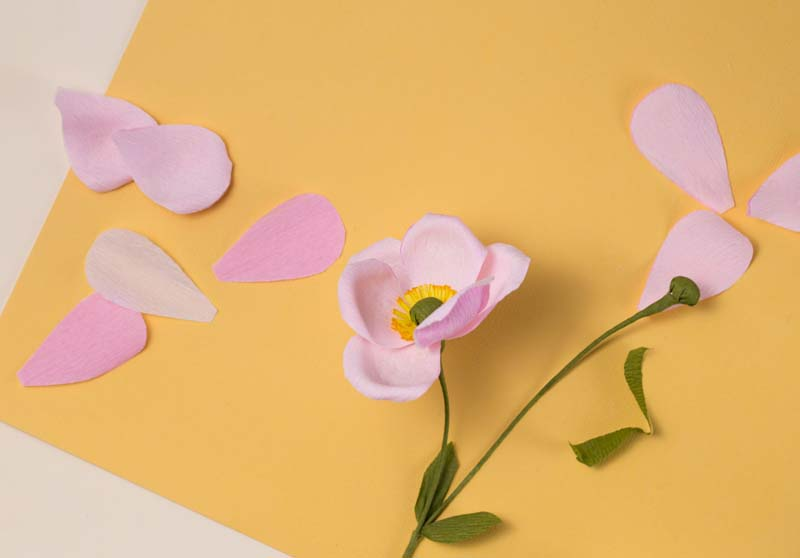 HOORAY-Magazine_How-To-Make-Paper-Flowers_02